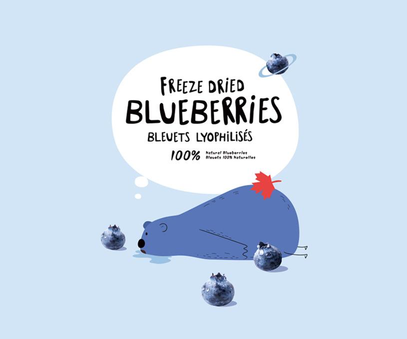 蓝小熊蓝莓食品品牌全案策划设计